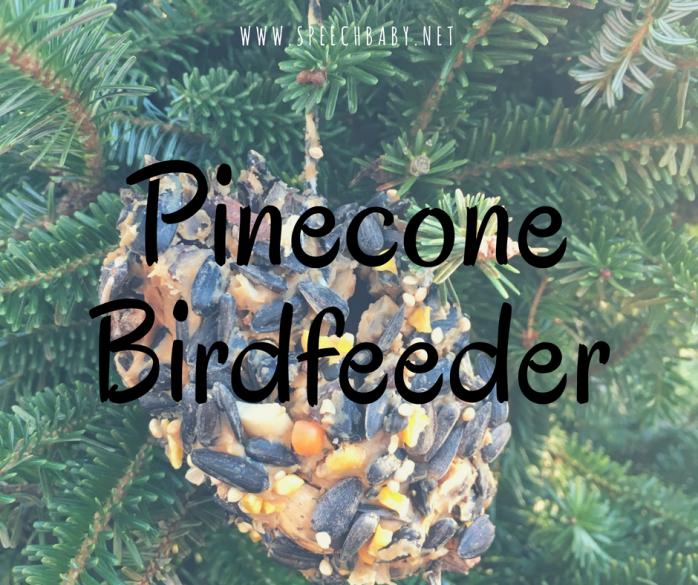 PineconeBirdfeeder(1).png